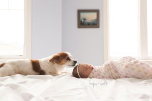 waterdown newborn photographer - baby kennedy in home lifestyle session with parents and dog
